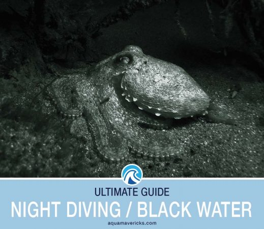 Night Diving Black Water Diving Header