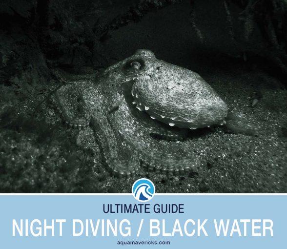 Night Diving Black Water Diving Header
