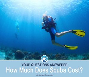 What does scuba diving cost