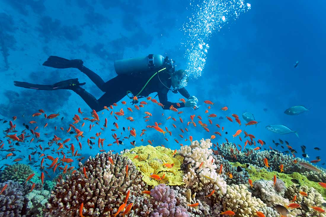 How to get started scuba diving