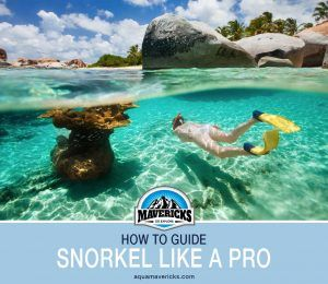 How to snorkel properly like a pro