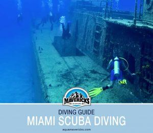 SCUBA Diving in Miami