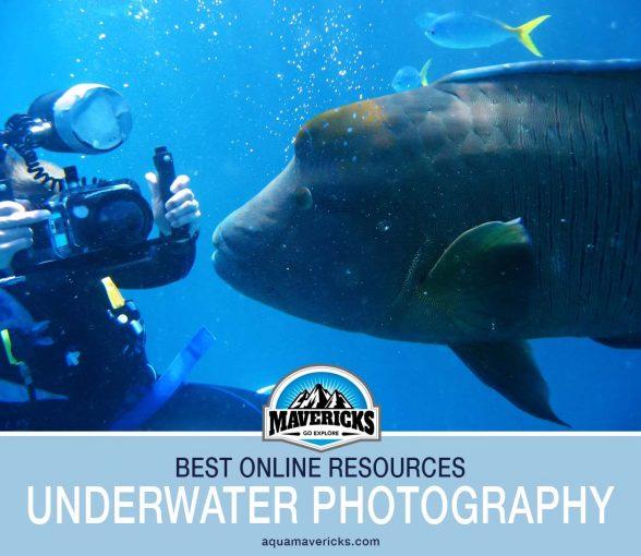 Best underwater photography sites