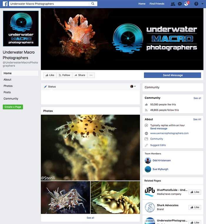 Underwater Macro Photographers Facebook