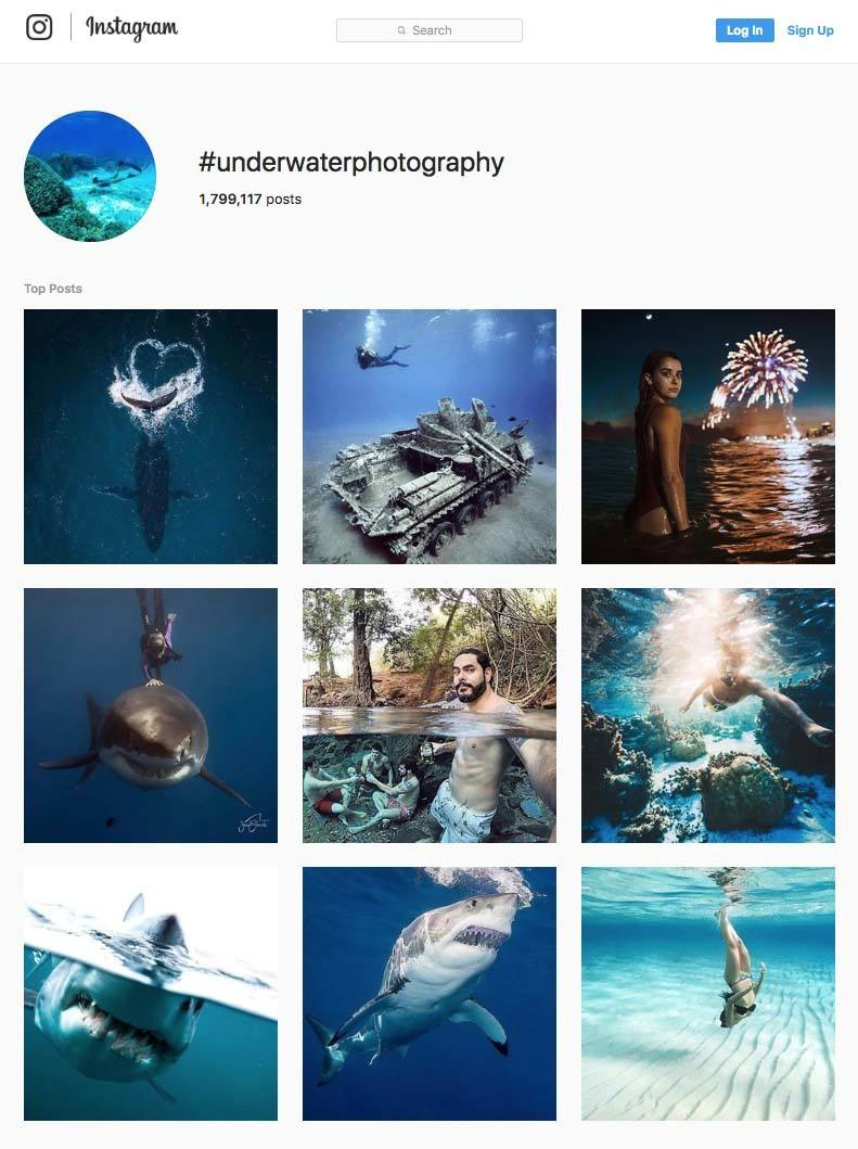 Underwater Photography Instagram